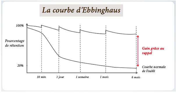 La courbe d'Ebbinghaus