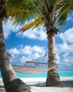 hamac entre 2 palmier au bord de la mer