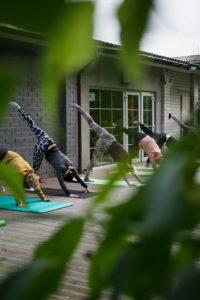 personnes pratiquant du yoga