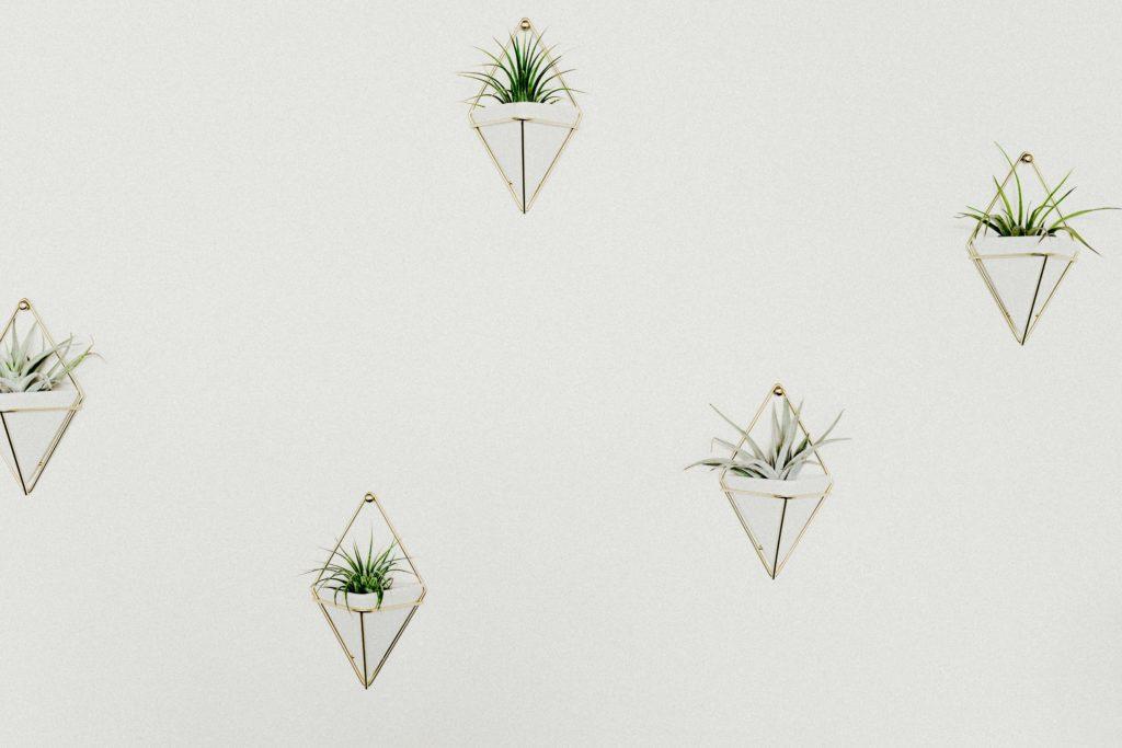 décor mural avec des plantes